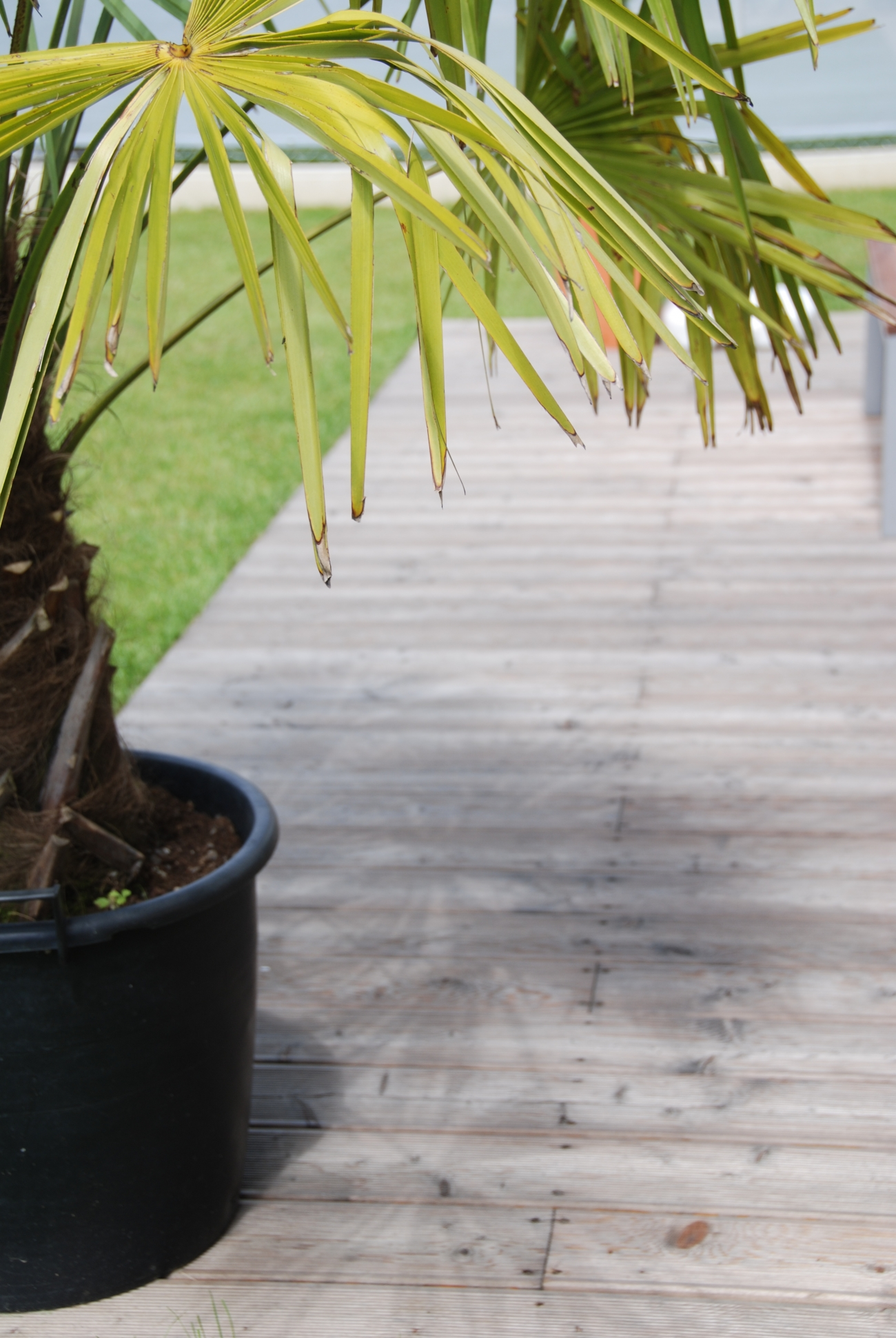 terrasse | lärche unbehandelt nach einem jahr